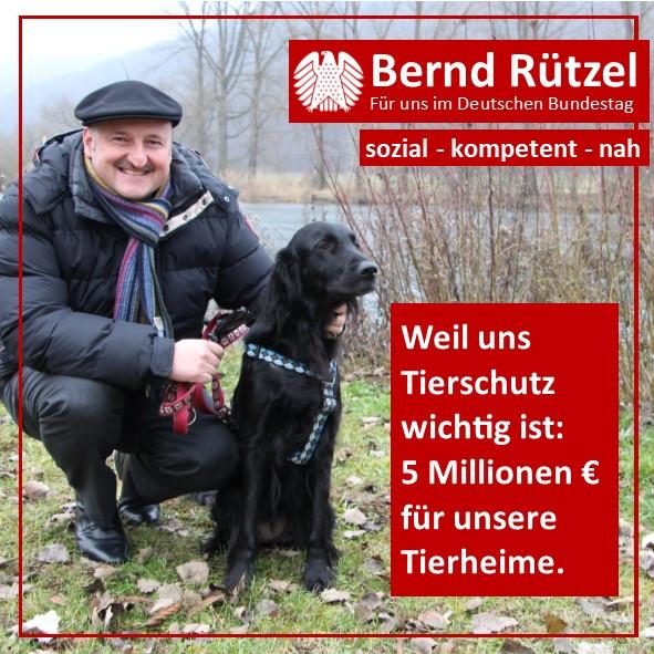 2021-04_Tierheim