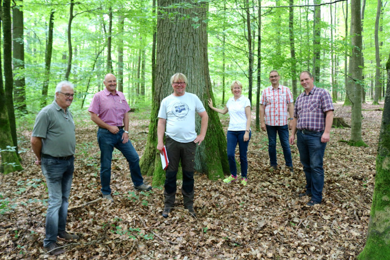 2020 Wald Burgsinn